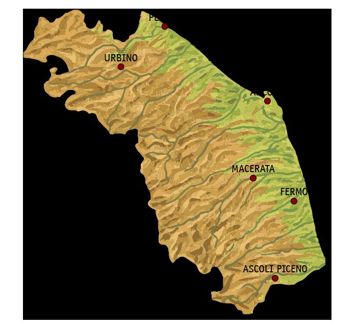 Immagini Cartina Marche.I Vini Delle Marche Certificati Con Il Marchio Di Origine Controllata Ais Marche